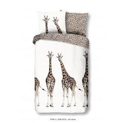Muller  Giraf