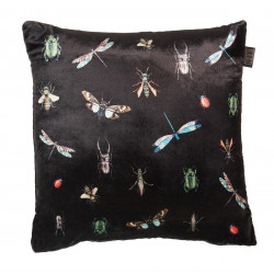 Kaat  Insects Multi